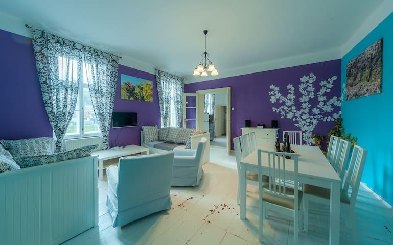 Vinařský apartmán Sauvignon - Znojmo - Apartment