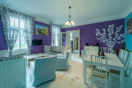 Vinařský apartmán Sauvignon - Znojmo - Huoneisto