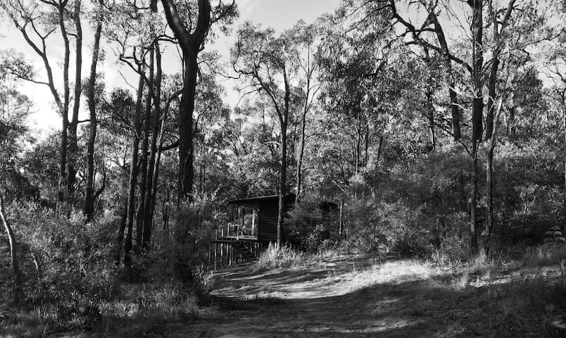 Bells Beach Cabin