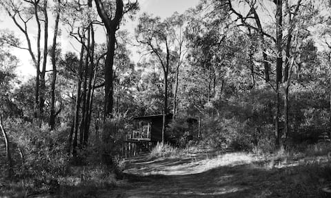 Bells Beach Cabin - Private, secluded bush setting