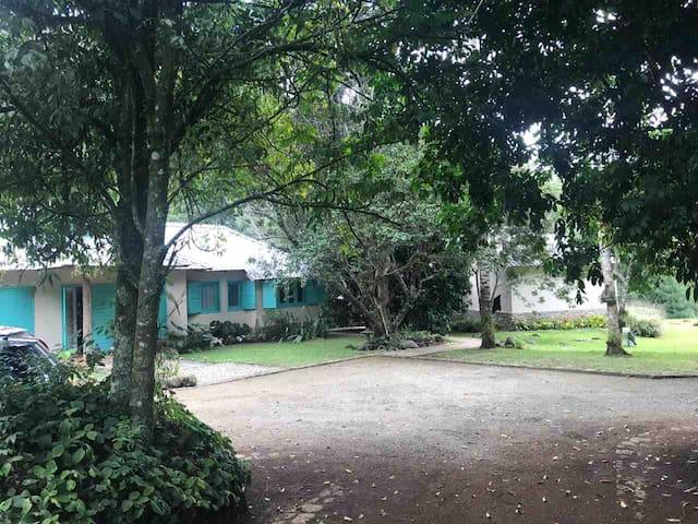 La Casa Roble