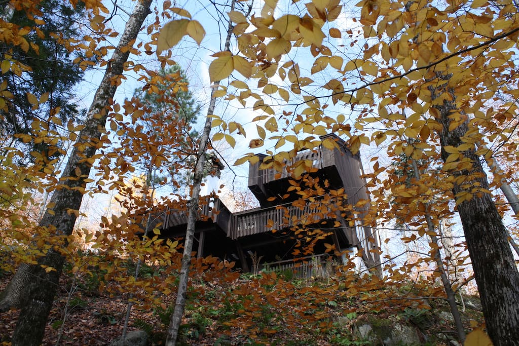 View of The Nest's multiple decks during Fall foliage