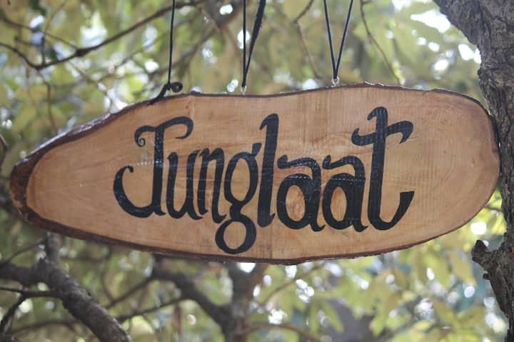 Junglaat Ecorganic Stays & Experiences