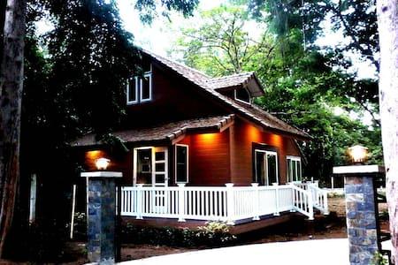 Saraphi Chiangmai : The Cottage - Tambon Tha Wang Tan - Haus