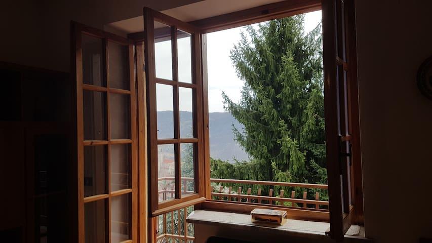 Tranquilla Casa in Montagna vicino a Cuneo - Viola - 公寓