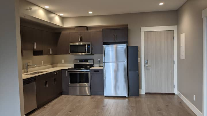 2BDR-2Bath Bright Stylish Condo- Hrt of DT Kelowna