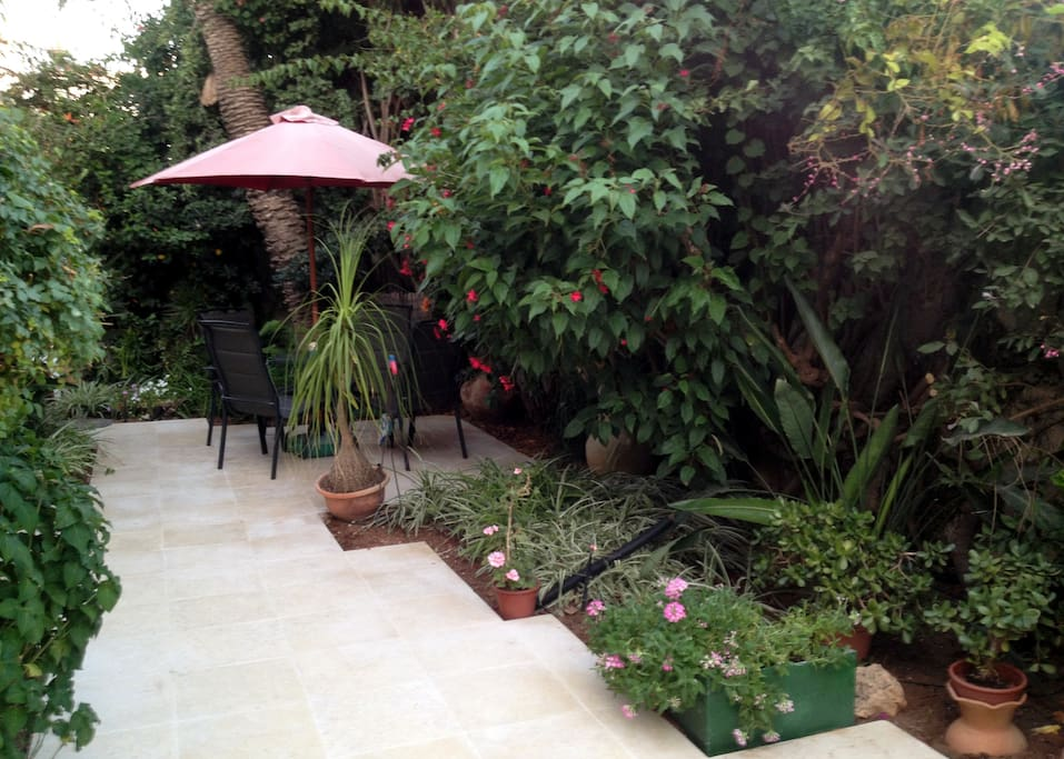 Another view of garden showing patio