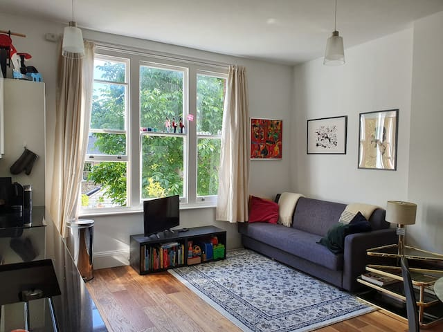 Cosy flat in Wimbledon Village