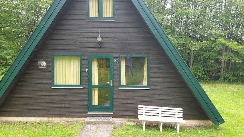 Ferienhaus im Ferienpark am Twistesee Haus Nr. 40