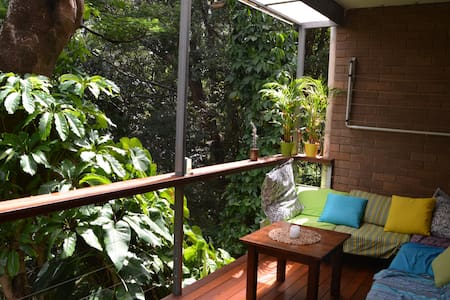 Quiet room in rainforest near UQ - Highgate Hill