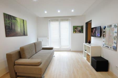 Just renovated - Nice Apartment in Vienna center - Wien - Huoneisto