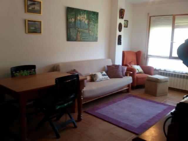 Bonito piso en Jaca en urbanización seminueva - Jaca - Apartemen