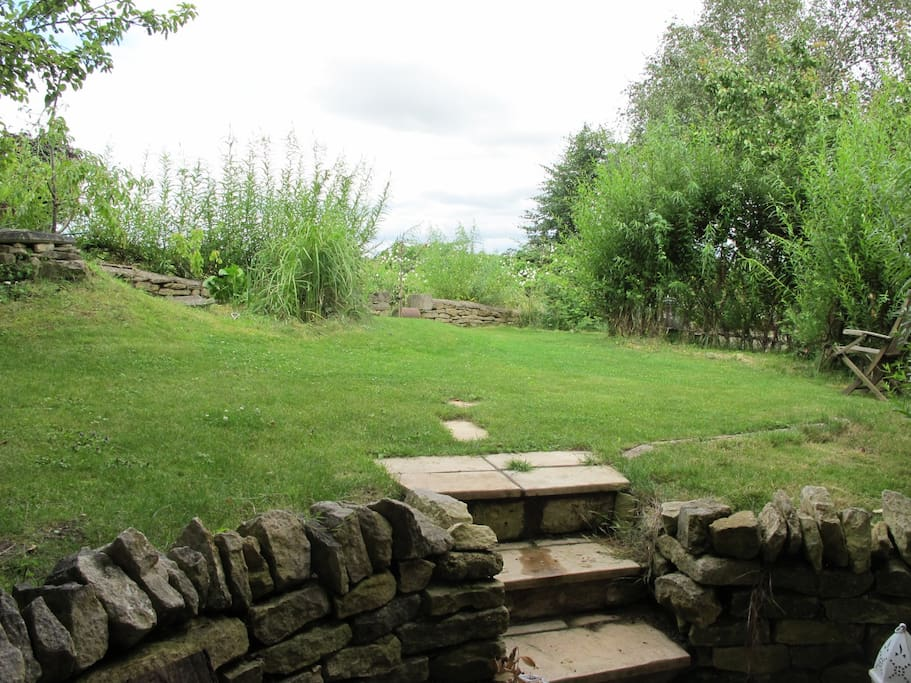 The garden from the biofold doors