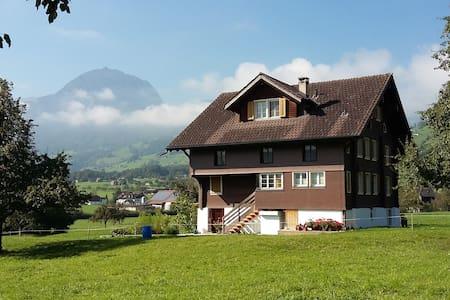 Wohnung im Grünen mit herrlicher Aussicht - Giswil - Apartemen