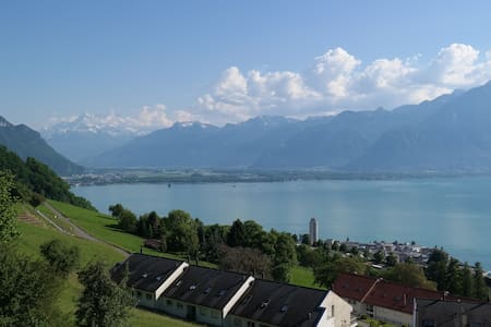Studio with nice view on Lake Geneva & the alps