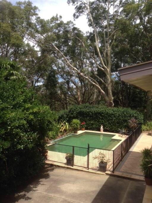 The pool overlooks bushland