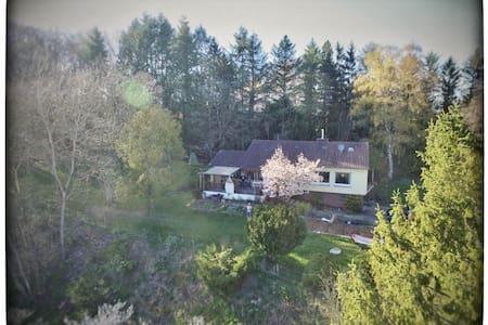 Kleine Wohnung inmitten der Natur der Eifel