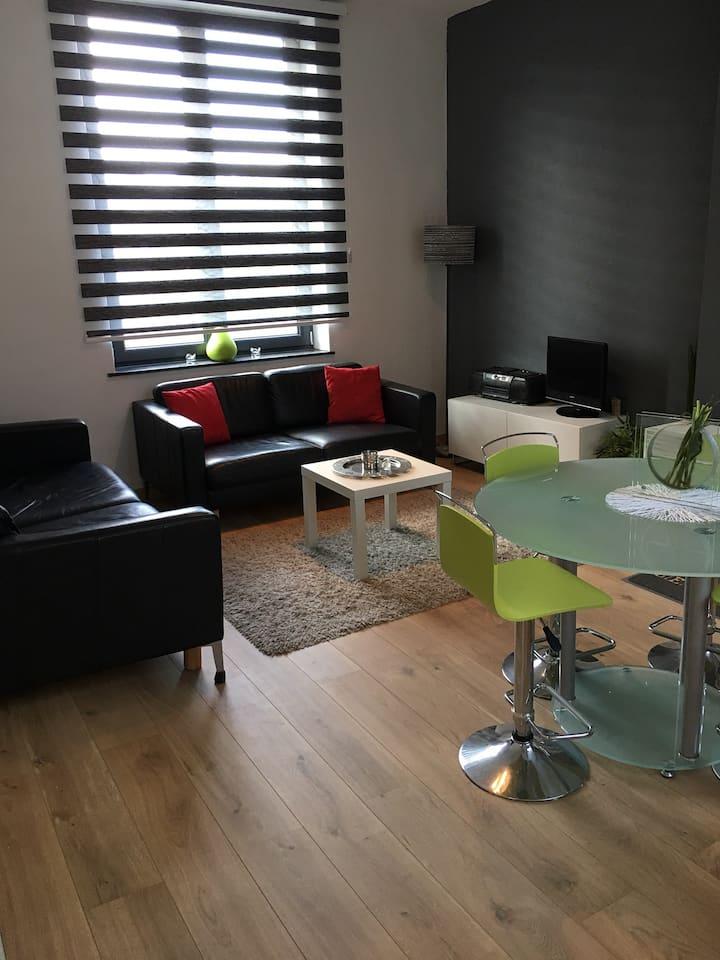 Bel appartement 1 Chambre