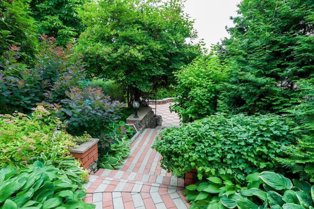 Красивый ухоженный сад
