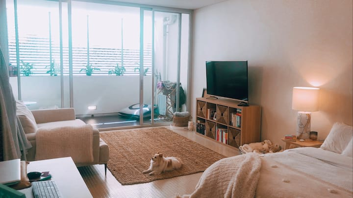 Darlinghurst Studio Apartment