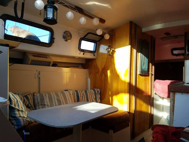 seating area,  and v-berth up fore of galley.