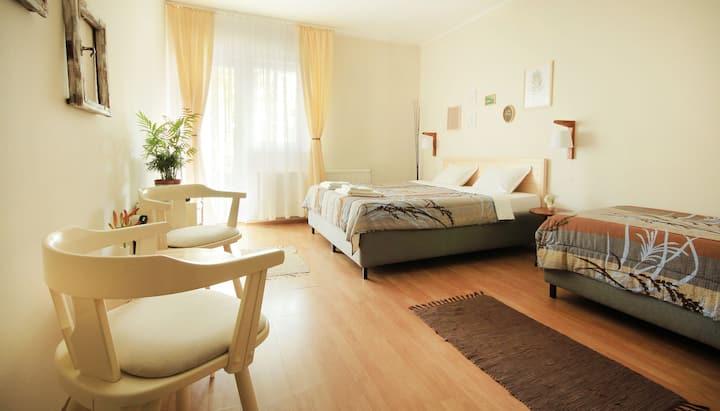 Double room Vila Dunavski Raj
