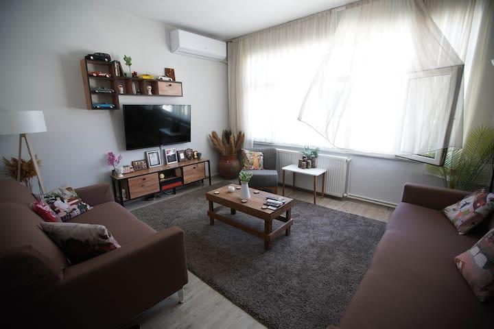Living Room Day Scene