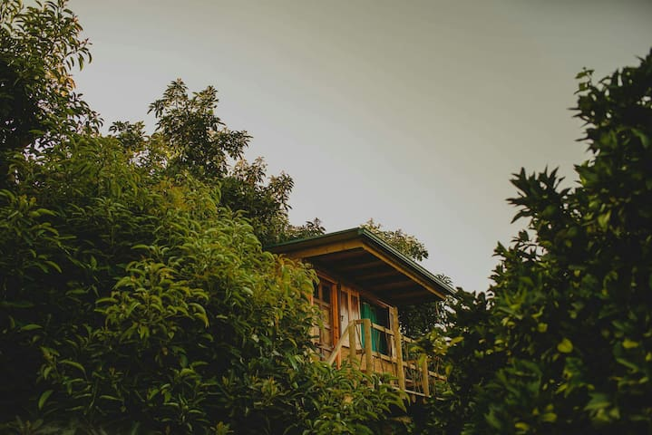Irene's Treehouse - Lefkochori - บ้านต้นไม้