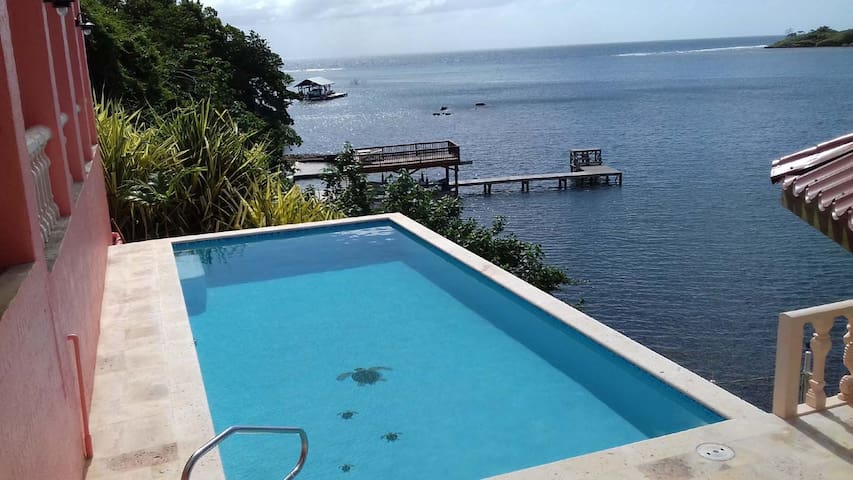 WATERFRONT - NEW POOL -KAYAK, SNORKEL, DIVE. - Jose Santos Guardiola - Casa
