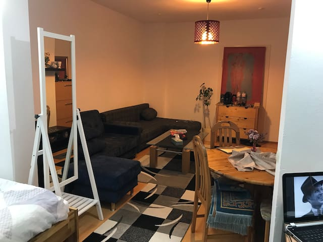 One huge Room in tow-Rooms Flat