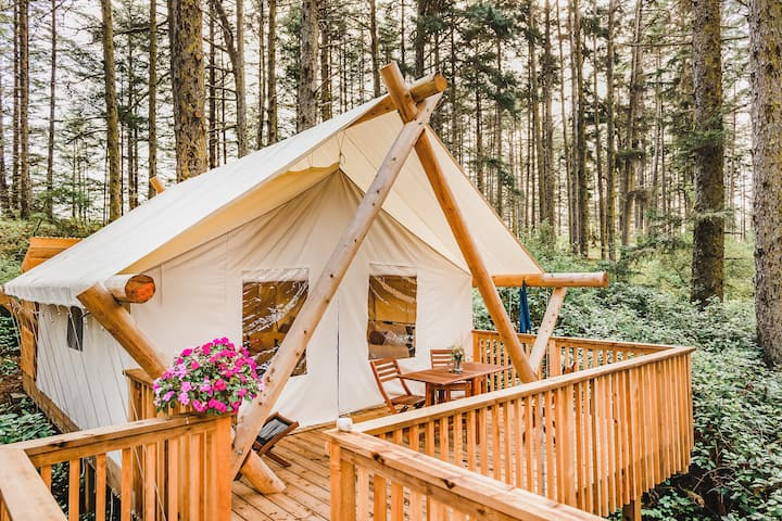Rainforest & Beach Glamping, Haida Gwaii 2