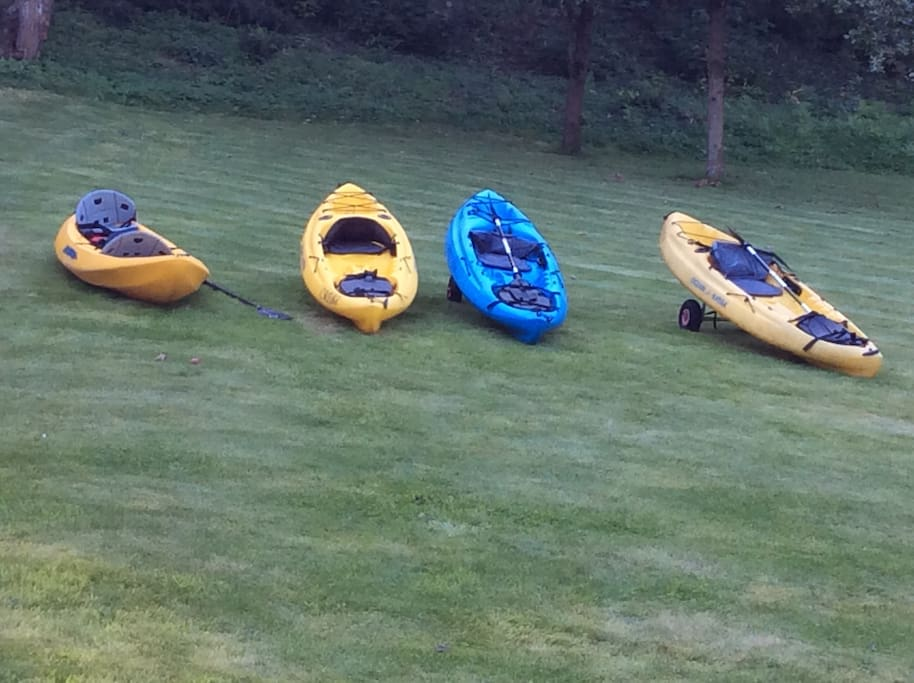 Three single kayaks and one double