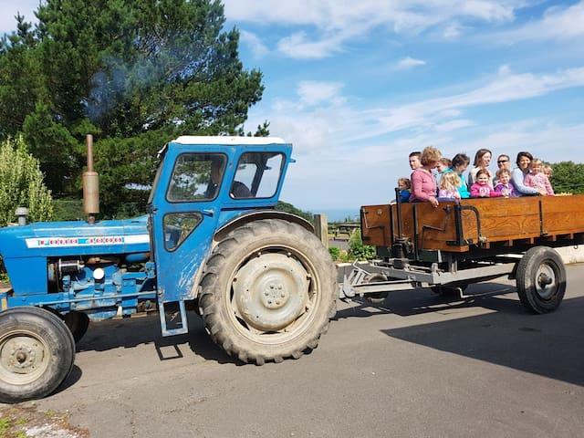 Farm Holidays in North Devon