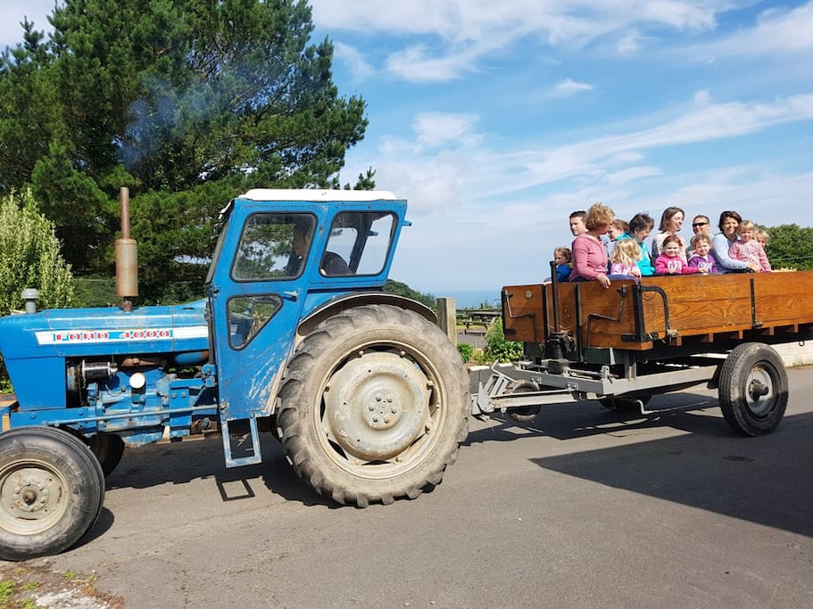 Farm Holidays in North Devon