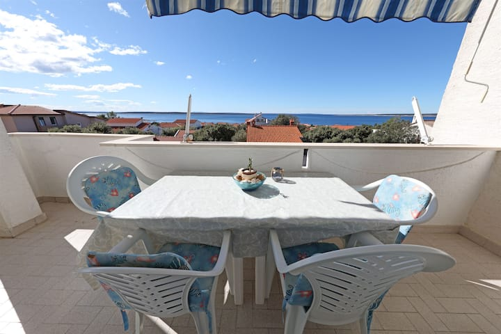 One bedroom Apartment, 200m from city center, in Mandre - island Pag