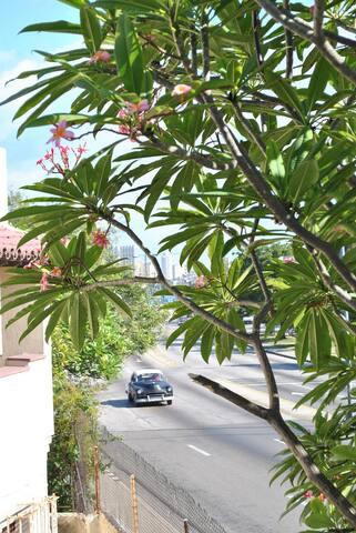 Hostal 2 Gardenias (wifi)