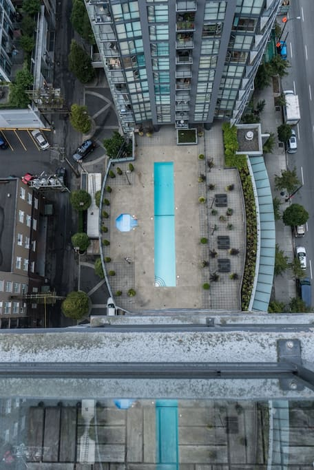 Olympic size swimming pool and jacuzzi