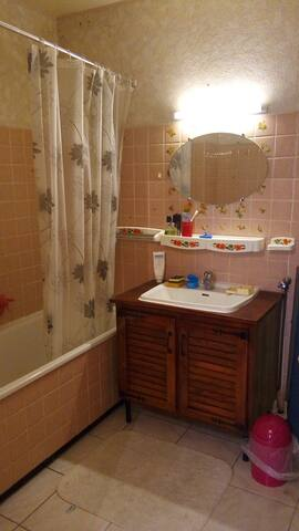 Chambre de 9m2 dans un un appartement de 64m2 - Alfortville - Apartment