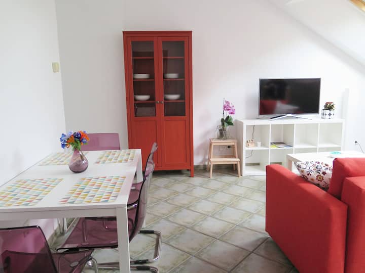 Apartamento Vista Alegre