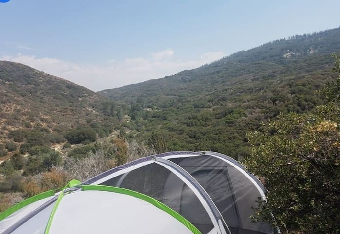 Dog friendly Mountain side Glamping