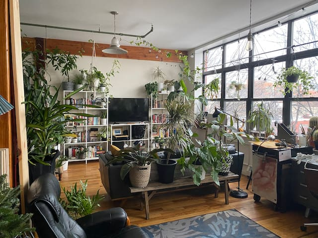 jungle oasis loft in red hook