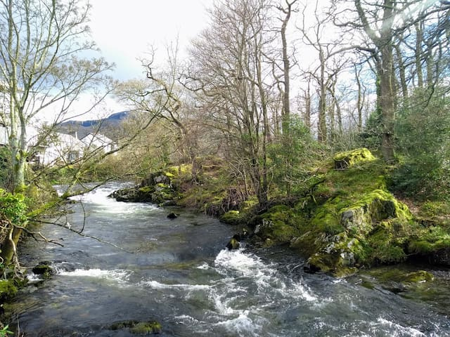 Welsh Mountains, River, Forests, ZipWorld, Pubs