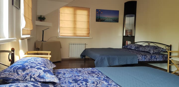 "Room ""Venice"" in guest house near Boryspil Airport"
