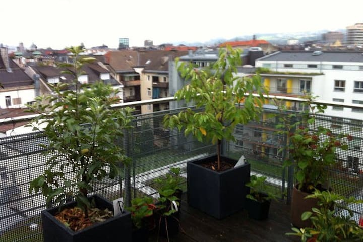 Penthouse in city center, amazing view - Innsbruck - Leilighet