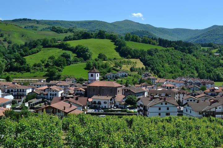 Vista del pueblo Doneztebe