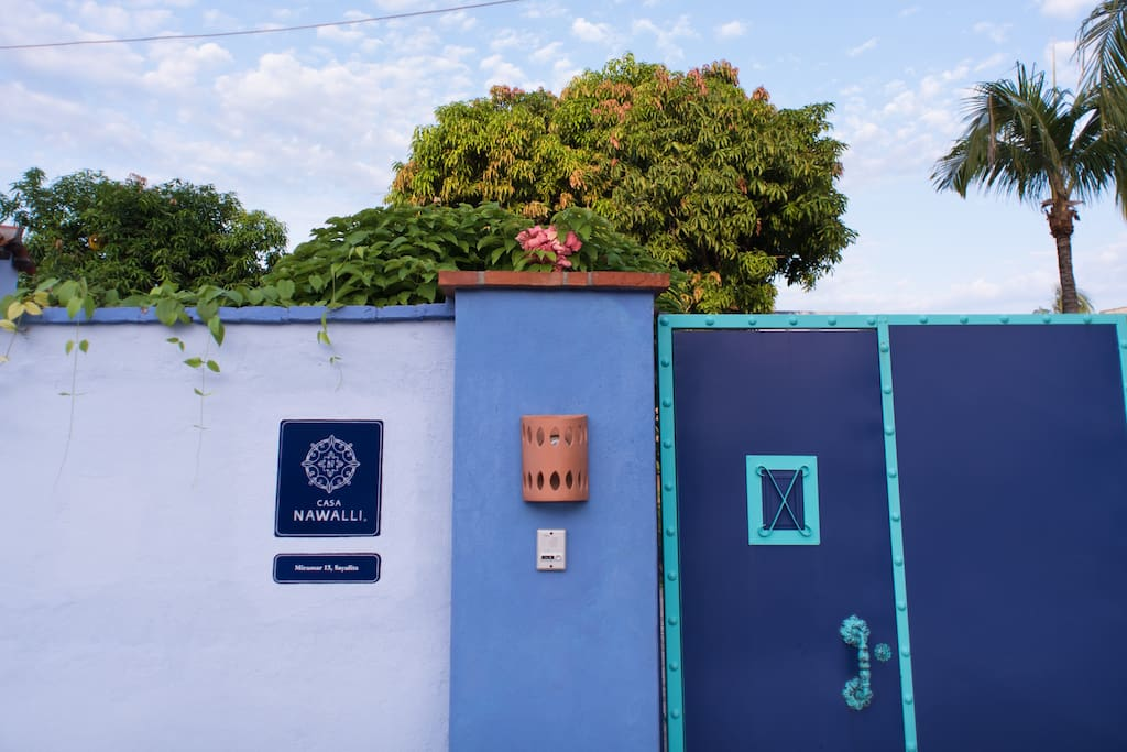 Welcome to our blue oasis!