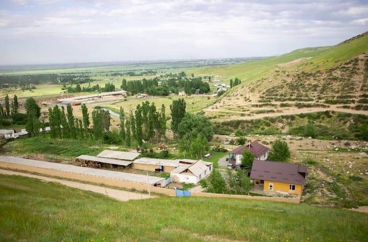 A Farmstay Nestled in the Foothills near Bishkek