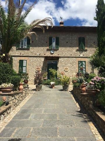 Edy House