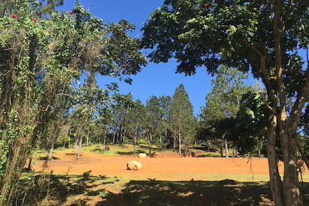 Carite Camping and Outdoor Retreat - Cayey - 其它