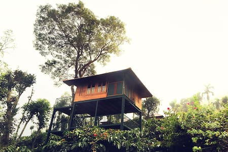 Tree House - Wayanad
